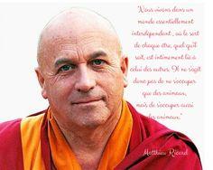 Citation Matthieu Ricard Plaidoyer pour les animaux copyright- echosverts.com