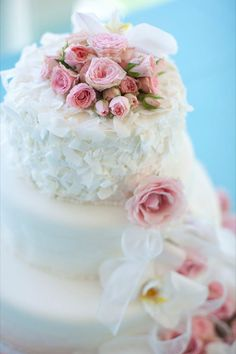 Romantic cake topped with pretty pink roses. Photography courtesy of Neil Slattery Photograph.