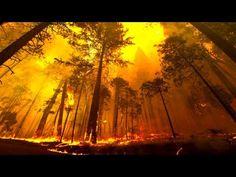 Pożary lasów - Enigmatis - Artifex Mundi Wiki