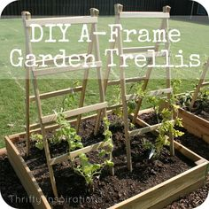 A-Frame Trellis {DIY Your Garden} -Gonna use these this summer for the raised beds :) Easy and quick to make