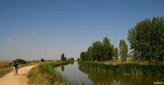 Canal de Castilla camino de Frómista
