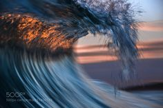 Blurry Eyed by BillyCervi #nature #photooftheday #amazing #picoftheday #sea #underwater