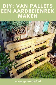 Outdoor Plants, Outdoor Gardens, Hydroponics, Spice Things Up, Gardening Tips, Diy Furniture, Cottage, Backyard, Indoor