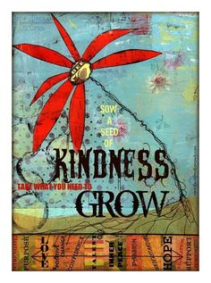 Sow a seed of kindness.