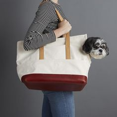 Dog Carrier / Canvas and Leather Pet Tote Natural & Crimson by LoveThyBeast