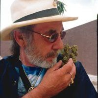 the story of Eddy Lepp « MarijuanaHut