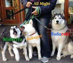 memes // Midoriya // Bakugou // Todoroki // All Might // My hero academia Boku No Hero Academia Funny, My Hero Academia Shouto, My Hero Academia Episodes, Hero Academia Characters, Anime Characters, Anime Meme, Funny Anime Pics, Anime Guys, Meme Comics
