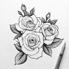 Illustration from @ Rose Drawing Tattoo, Flower Tattoo Drawings, Tattoo Design Drawings, Flower Tattoo Designs, Tattoo Sketches, Watercolor Tattoo, Two Roses Tattoo, Rose Tattoos, Flower Tattoos