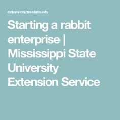 Starting a rabbit enterprise | Mississippi State University Extension Service