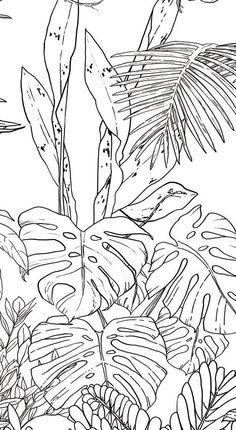 Tropical wild birds and plants. Tropical garden collection
