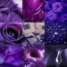 Crown Chakra, Colour Therapy (Purple Collage)