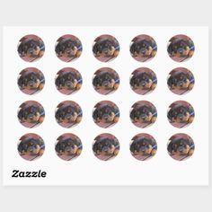 150 Rottweiler Puppy Ideas In 2021 Rottweiler Puppies Rottweiler Rottweiler Dog