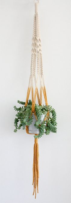 Macrame Hanger Dip Dyed Mustard by studioraw on Etsy