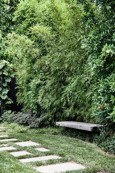 Bamboo for Backyard . Bamboo for Backyard . 254 Best Bamboe Bamboo Images In 2020