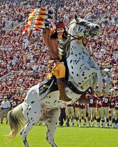 Chief Osceola  Picture at Florida State Seminoles.  This is my favorite part of game day! Watching Chief Osceola & Renegade ride onto the field and throw the flaming spear