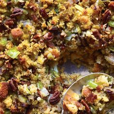 This stuffing is brimming with traditional holiday flavors, including leeks, herbs, and pecans. We used our Honey Corn Bread recipe but left off the honey topping. Store-bought cornbread also works well.