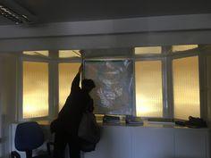 Glasgow Map, Windows, Curtains, Home Decor, Blinds, Decoration Home, Room Decor, Draping, Home Interior Design