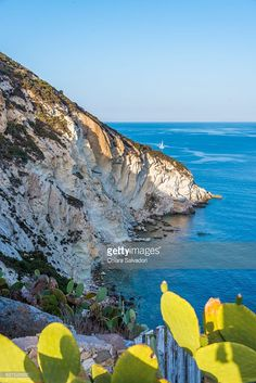 'Punta Incenso' in Ponza Island   Ponza Island, Italy   #stockphotos #gettyimages #print #travel