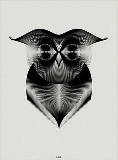 Owl | Coruja