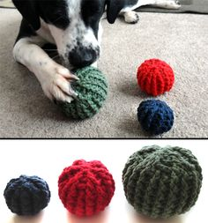 Textured Ball Dog Toys pattern by Rachel Choi Puppy Obedience Training, Basic Dog Training, Training Your Puppy, Training Dogs, Crochet Cat Toys, Positive Dog Training, Easiest Dogs To Train, Dog Behavior, Stuffed Toys Patterns