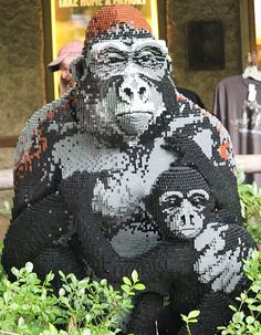 Legos apes