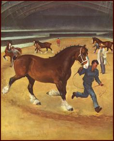 Clydesdale horse bok illustration by Wesley Dennis, 1951 | eBay