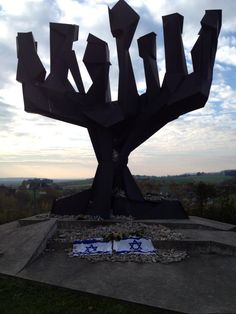 This is the Memorial to the Jewish victims of the Holocaust at the Mauthausen Concentration Camp outside of Vienna - there are tens of thousands of rocks put there by visitors to honor the 6 million.