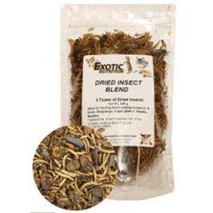 MIX INSETTI DISIDRATATI  Mix di insetti disidratati, contenente vermi, grilli e pupe di bachi da seta.  http://www.todopetauros.com/it/home/102-mix-insectos-deshidratados.html
