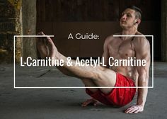 Our complete guide to L-Carnitine.  http://www.workoutnrecover.com/supplements/best-l-carnitine-supplement/