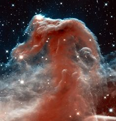 """A picture of the Horsehead Nebula by NASA via Hubblesite. """"The Horsehead Nebula is a cloud of ionized-hydrogen in the constellation Orion. These clouds are lit from within by young, hot stars. The interstellar dust absorbs the light from part of the ionized cloud creating this beautiful contrast."""""""