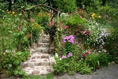 FLOWER GARDEN Pictures, Images and Photos