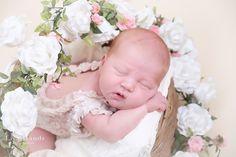 Newborn photography by Lisa Hands Portraiture