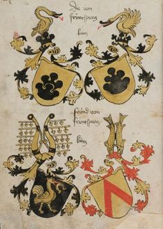 Wappenbuch des St. Galler Abtes Ulrich Rösch Heidelberg · 15. Jahrhundert Cod. Sang. 1084  Folio 207