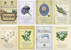 victorian language of flowers - Google Search