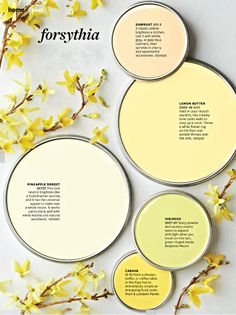 Soft and Pretty Paint Colors is part of Future home Colors - Pretty colors in soft creams and buttery yellows are the perfect match for freshening up your home for the upcoming spring months Better Homes and Garden's Mag… Yellow Paint Colors, Paint Color Schemes, Interior Paint Colors, Yellow Painting, Paint Colors For Home, Wall Colors, House Colors, House Exterior Color Schemes, Home And Deco