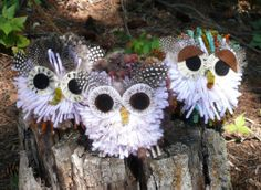 make owls for party