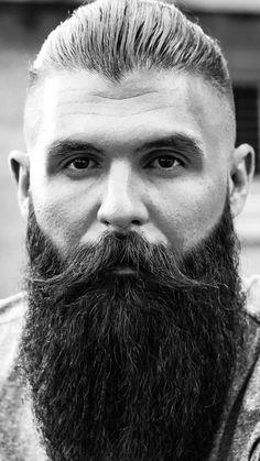 Medium Beard Styles, Long Beard Styles, Hair And Beard Styles, Walrus Mustache, Moustache, Beard No Mustache, Grey Beards, Long Beards, Beard Maintenance