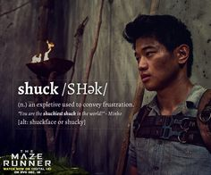 Brush up on your shuckin' Glader slang.<<<They needed more slang in the movie #justanotherprobwiththemovie