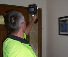 A Pre purchase pest inspection is the essential check for issues or problems with any property. Similarly, Pre sale pest inspections can be vital to secure a quick sale, ensuring there are not any unknown expenses in your move. Types Of Bugs, Types Of Insects, Pest Inspection, Melbourne, Brisbane, Pest Control Services, Garden Guide, Natural Garden, Shade Plants