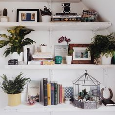"Lily Plume az Instagramon: ""#CultivateYourSpace  inspired by @thebazaarbohemian  some lifestyle projects coming to the blog soon  #plants #shelfie #books #smallspaces #myroom #uoaroundyou #lifestyle #deco #interior #shelves #display #UOEurope #interiordesign #diy #roomstyle #instagoodmyphoto #details #homedesign #terrarium #cacti #succulents #trinkets #vsco #vscocam #blogger """