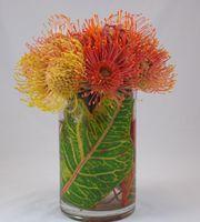 Pincushion Protea Vase arrangement.  Simple and elegant.