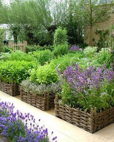 Veggie garden contained in willow fencing that looks like baskets. -- My DREAM garden! Raised Garden Beds, Raised Beds, Raised Gardens, Raised Flower Beds, Raised Planter, Garden Benches, Vertical Gardens, Farm Gardens, Edible Garden