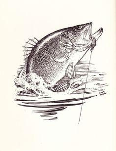 Black Bass Fishing: Robert Page Lincoln – Part 1 Bass Fishing Tips, Fly Fishing, Fishing Basics, Fishing Lakes, Magnet Fishing, Fishing Pliers, Fishing Store, Fishing Videos, Fishing Quotes