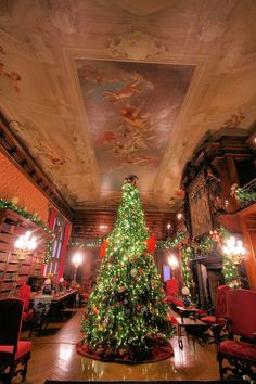 Christmas inside Biltmore House - in the Library. Asheville NC. Built by George Vanderbilt.