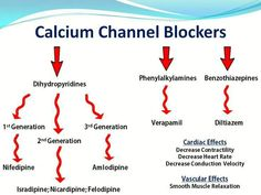 What are calcium stations blockers (CCBs) and just how do they work? Calcium channel blockers are drugs that obstruct the access. Pharmacology Mnemonics, Pharmacology Nursing, Dental Facts, Medical Facts, Critical Care Nursing, Medical Laboratory Science, Medicine Student, Nursing School Notes, Acute Care