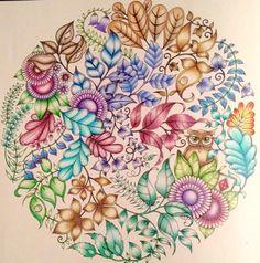 Jardim Secreto Colorido