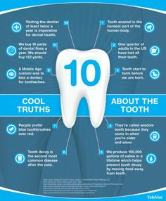 Did you know these cool truths about the tooth?