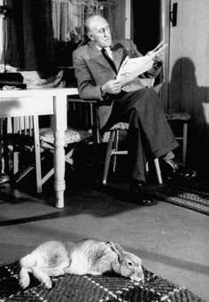 Horace the hare sprawled out on the kitchen floor in home of Cecil S. Webb, director of the Dublin Zoo, 1956