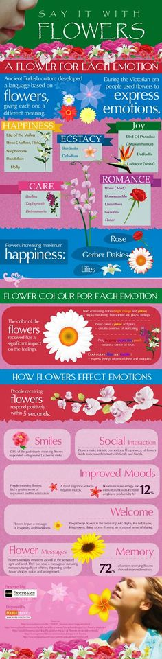 """Fleurop.com is presenting a wonderful infographic titled """"Say it With Flowers"""" which educate us about the languages spoken by flowers. Every flower express some emotions. Ancient Turkish people has developed a language based on flowers, in which each flowers are categorized the express the different emotions. This infographic relates each flower colour with its respective emotion. It also reveals about the impact of flowers on the mood of person who receive flower and flower bouquet."""