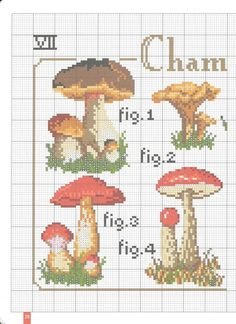 Mushrooms♡きのこ1